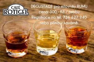 degustace_rumu